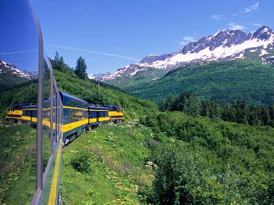 Alaska Denali Train Tour with Icebergs & Bears