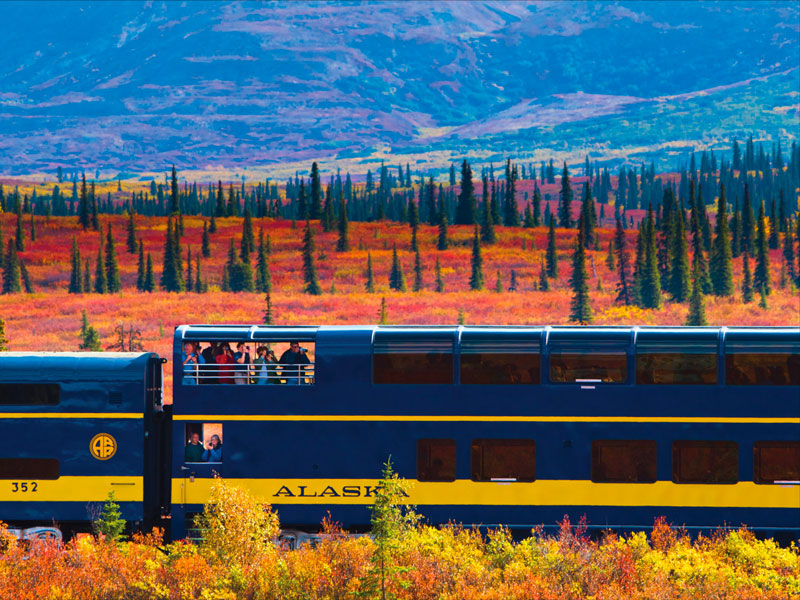 Denali Kenai Alaska Train Explorer Tour