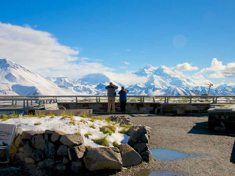 Denali Kenai Alaska Train Explorer Tour | Denali National Park Backcountry Tour